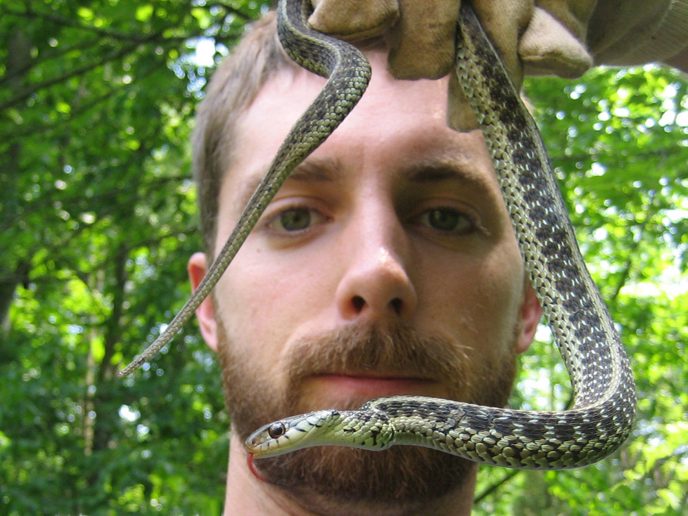 Florida Snake Photograph 053 - This is a photograph of me ...