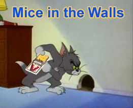 Mice in the Wall - How to Get a Mouse Out of Your Walls