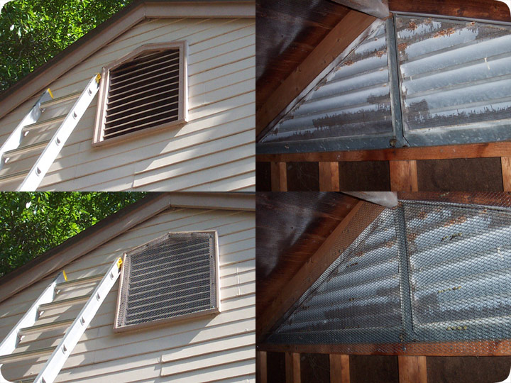Vent Repair To Keep Squirrels Out