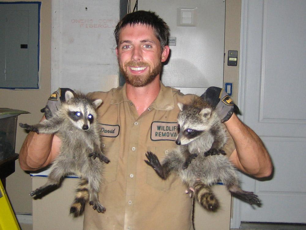 Florida Wildlife Management
