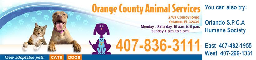 Orange County Florida Animal Control, Orlando FL